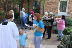 Animal Blessing October 3, 2010