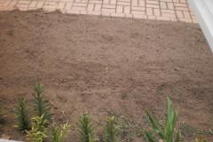 Watch Our Vegetable Garden Grow!